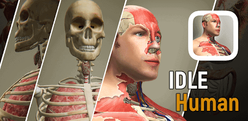 idle human mod apk unlimited everything